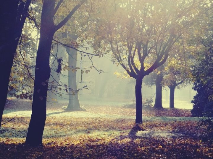 De winterdepressie vanuit zielenperspectief (1): de cyclus van de seizoenen