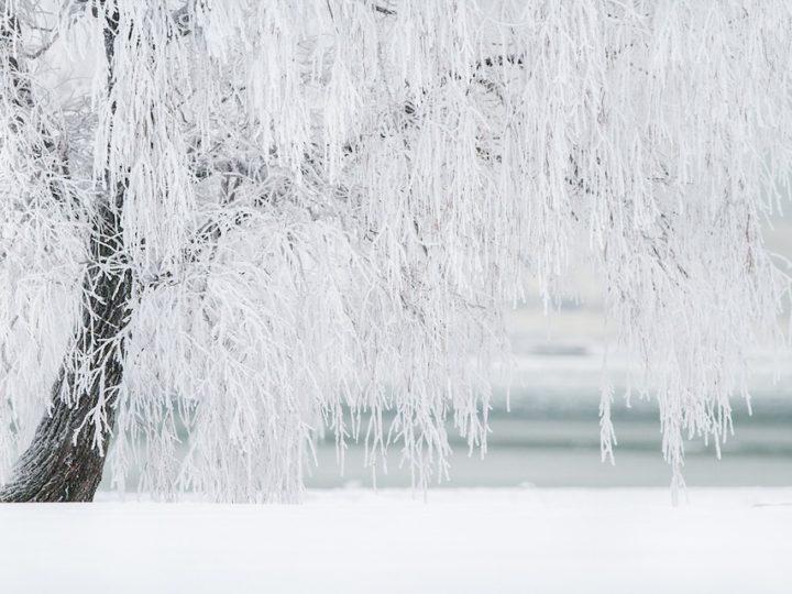 Winterdepressie vanuit zielenperspectief (2): inkeer, zelfreflectie en integratie