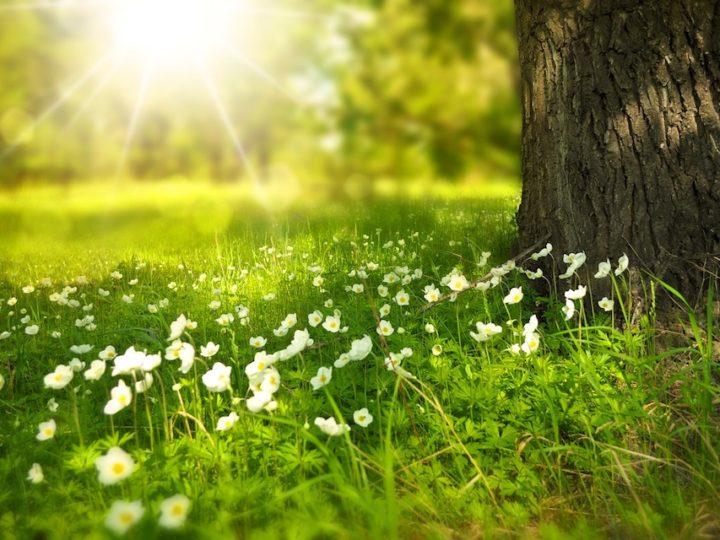 Hoe zijn jouw spirituele levenslessen geactiveerd en waarom is het fijn ze vanuit 4-5 D te benaderen?