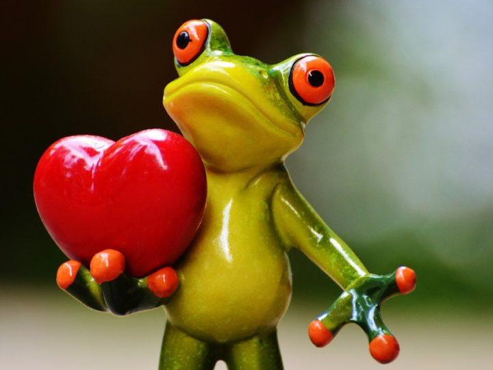 Vertrouw jij vanuit je hart of vanuit je hoofd?