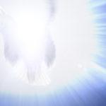engel-dreamstime_m_27981773-960x640